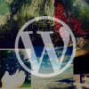wordpressサイト高速化
