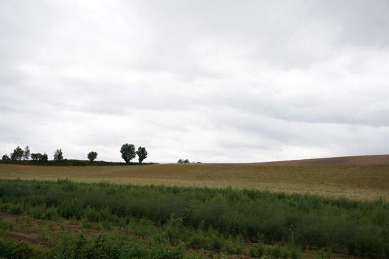 北海道の広大な田畑
