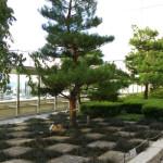 JR大阪駅で時間潰しなら駅ビル内に公園があって休憩所になるよ