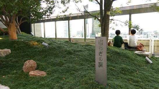 和らぎの庭