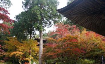 金剛輪寺本堂