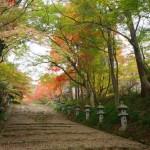 滋賀で静かに紅葉を見たいなら多賀町の「胡宮神社」が穴場でおすすめ