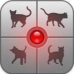 猫に話しかければ言葉が通じるかも?猫語に翻訳アプリ「人猫語翻訳機」
