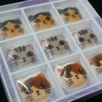 ミニ和風ニャシュマロを猫好きな人にプレゼントすればハートをギュッとキャッチ