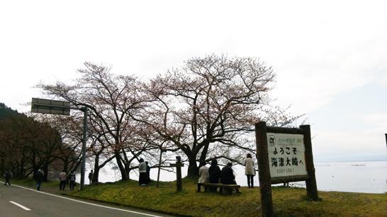 海津大崎入り口