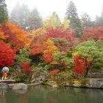 滋賀の湖東三山「百済寺」で雨の紅葉も幻想的で美しかった