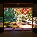 本堂から眺める庭園の紅葉が絶景!穴場の滋賀県米原市「清瀧寺徳源院」