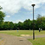 彦根市にある千鳥ヶ丘公園は自然豊かで散歩やランニングにおすすめ