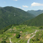 岐阜のマチュピチュと呼ばれる春日六合の茶畑「天空の遊歩道」から絶景を望む