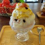 鴨川のほとり京都丸太町の緑豊かなカフェ「喫茶いのん」でかき氷をいただきました