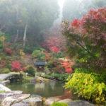霊水「善水元水」も湧き出る滋賀県湖南市の善水寺で紅葉散策