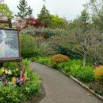 滋賀と京都の境目にある花の美しい庭園「ガーデンミュージアム比叡」