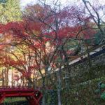 【岐阜県の横蔵寺】紅葉時期の駐車場と写真撮影について